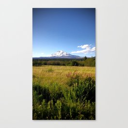 (#89) Summer View of Mount Adams Canvas Print
