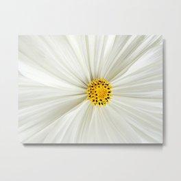 Cosmos Flower Core Metal Print