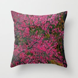 Dazzled by Red Throw Pillow