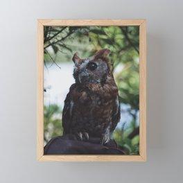 Cute Sweet Owl Framed Mini Art Print