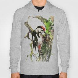 Dawny Woodpecker Hoody