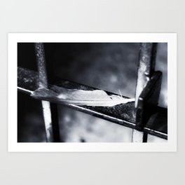 Caged bird free. Art Print