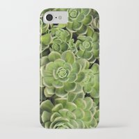 succulent iPhone & iPod Cases featuring Succulent by Cynthia del Rio