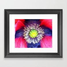 The Heart of the Poppy Framed Art Print