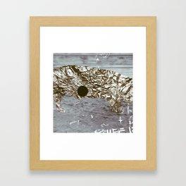 016 Framed Art Print