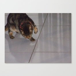 Sneaking Canvas Print