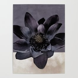 Black Lotus Watercolor Digital Art 2 Poster