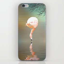 Feathered in pink iPhone Skin