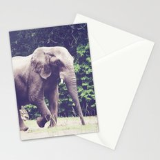 Saunter Stationery Cards