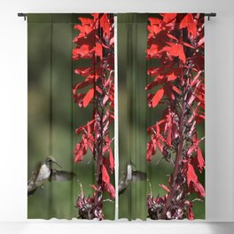 Hummingbird on Red Blackout Curtain