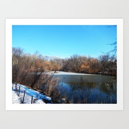 Winter in Central Park, NYC Art Print