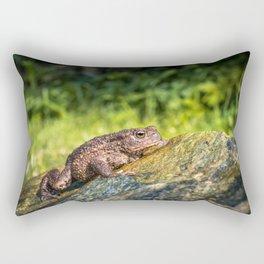 Amphibian, Common British Toad / Frog Rectangular Pillow