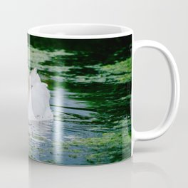 A White Swan Eating Grass In the Water Coffee Mug