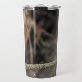 Robin on a Branch Travel Mug