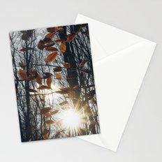 Fall Light Stationery Cards