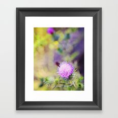 Wild Thistle Framed Art Print