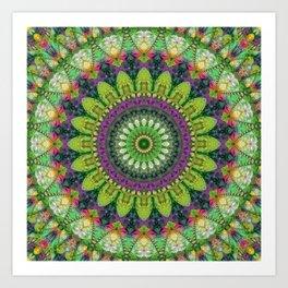 Mandala Patchwork 2 Art Print