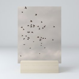Birds play Mini Art Print