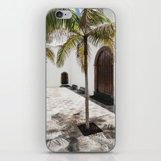 Palm tree growing in the street. La Palma, Canary Island. iPhone Skin