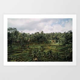 Bali Tegalalang II , Indonesia Art Print