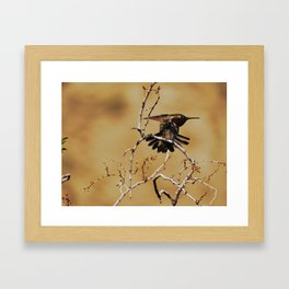 Hum Framed Art Print