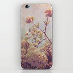 Here and Gone iPhone & iPod Skin