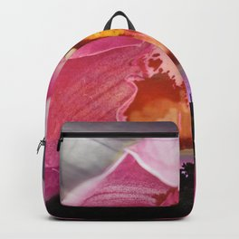 Blushing Sunset Backpack