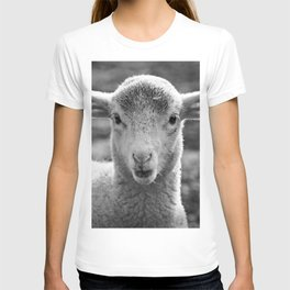 Lamb's portrait T-shirt
