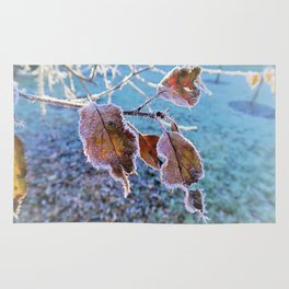 frost and Winterlight Rug