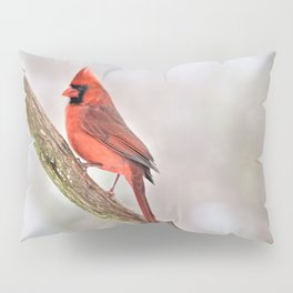 Simplicity: Northern Cardinal Pillow Sham