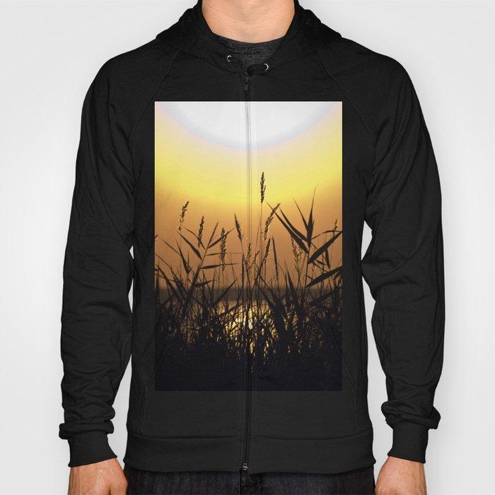 Seagrass - Summersunset - Isle Ruegen Hoody