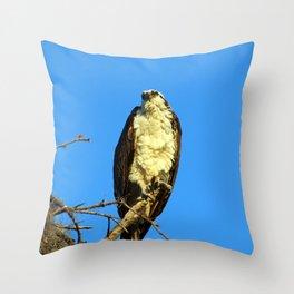 An Osprey in a Tree Throw Pillow