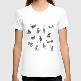 13 Lucky Black Cats T-shirt