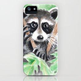 El Bandito Raccoon In The Tree iPhone Case
