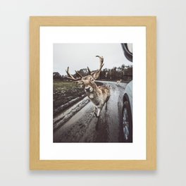 Making Friends Framed Art Print