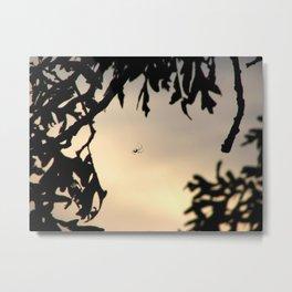 Spider Sunset Metal Print
