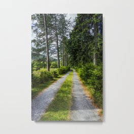 Country Path Walks Metal Print