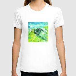 Spring Schism T-shirt