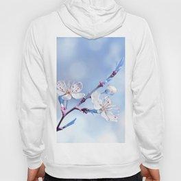 Spring blue 079 Hoody