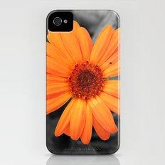 Orange Flower iPhone (4, 4s) Slim Case