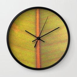 stem Wall Clock