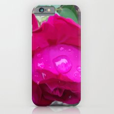 Rose Water Slim Case iPhone 6s