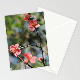 Spring Softness Stationery Cards