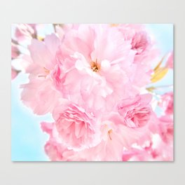 Soft Blue Sky with Pink Peonies Canvas Print