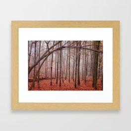 Red twilight Framed Art Print