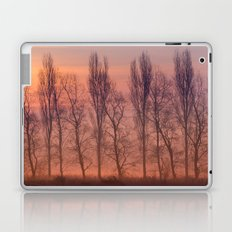 Beyond the Dawn Laptop & iPad Skin
