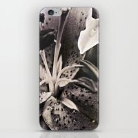 lily iPhone & iPod Skins featuring lily by inourgardentoo