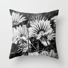 Desert Daisies (bnw) - Daisy Project in memory of Mackenzie Throw Pillow