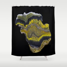 Bumble Bee Jasper Shower Curtain