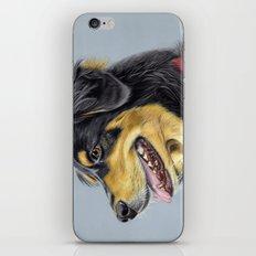 Dog Portrait 01 iPhone & iPod Skin